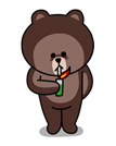 brown_and_cony-10