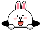 brown_and_cony-50